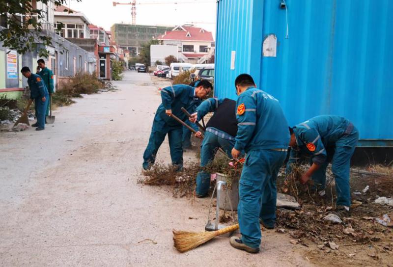 青岛志愿活动照片.png